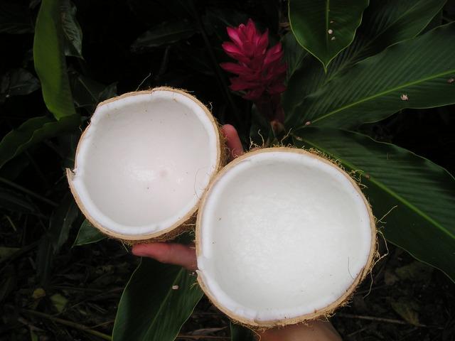 Rozbitý kokos s dužinou