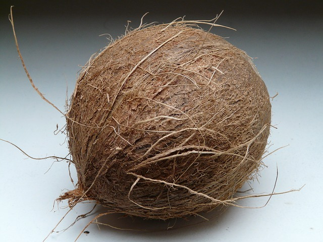 Kokos i se skořápkou